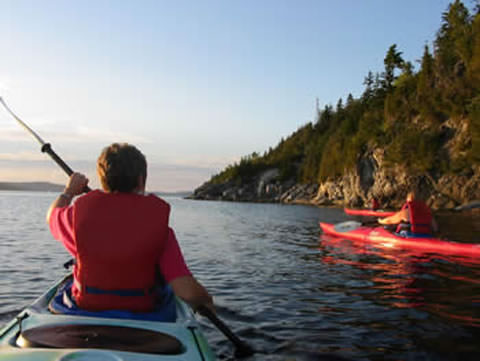Kayakers in Bay of Fundy