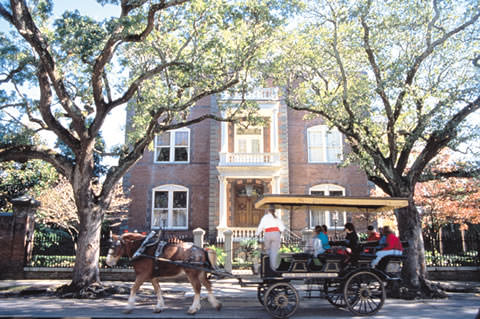 Carriage Tours are a good way to see Historic Charleston