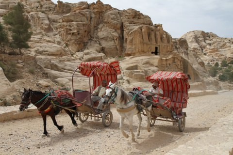 Petra carriages