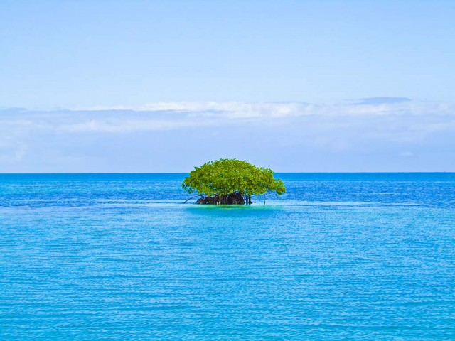 Tiny island off the coast of Honduras