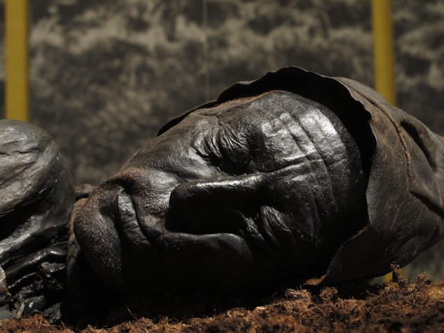 The best reason to visit Silkeborg, Denmark, near the town of Aarhus: the well-preserved visage of the Tollund Man. Photo © Aaron Saunders