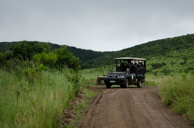 The unpredictable nature of Safaris makes this cruise very repeatable. Photo © 2013 Aaron Saunders