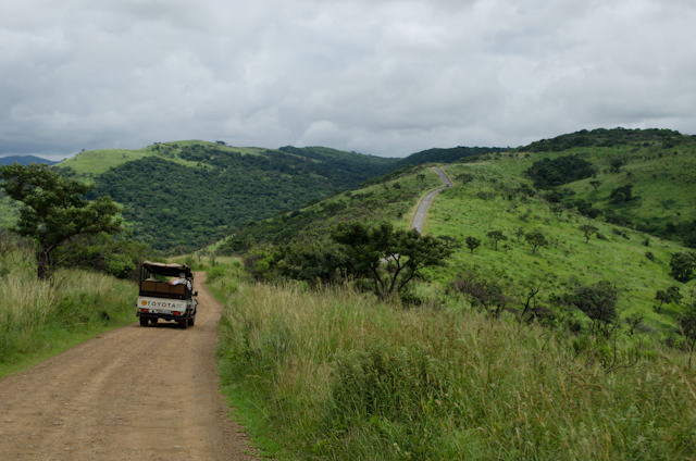 A Safari vehicle traverses a portion of the park's 118,000 acres of wilderness. Photo © 2013 Aaron Saunders