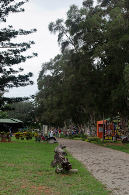 The FEIMA market was spread out over a residential neighbourhood park. Photo © 2013 Aaron Saunders