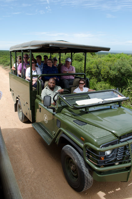 On safari in the only Big 7 Game Park in the world. Photo © 2013 Aaron Saunders