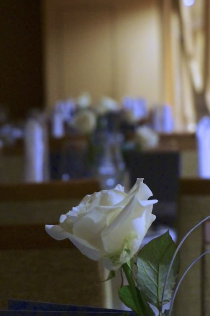 White roses for dinner service on A-ROSA. © 2013 Ralph Grizzle