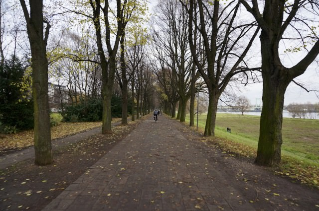 I biked along the Rhine river today. © 2013 Ralph Grizzle