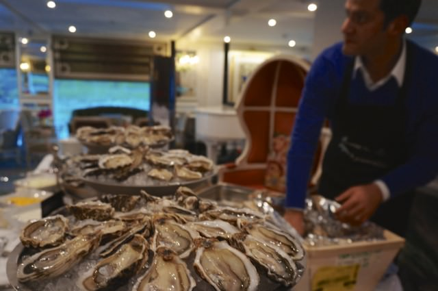 Oysters served in Van Gogh Lounge On S.S. Catherine. © 2014 Ralph Grizzle