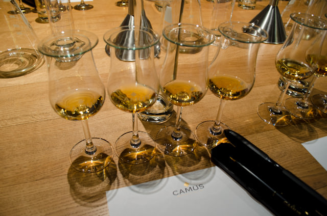 Our Cognac adventure started off with a tasting of four different crus. Photo © 2014 Aaron Saunders