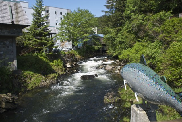 Ketchikan Creek, site of the famous salmon run. © 2014 Gail Jessen