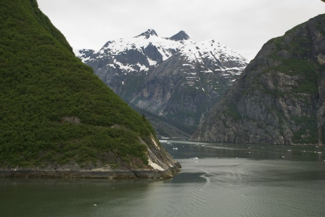 Heading into Tracy Arm Fjord, hoping to see glaciers! © 2014 Gail Jessen
