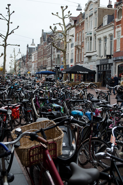 The Dutch fascination with cycling continues. I wish more countries were as bicycle-friendly as the Netherlands. Photo © 2014 Aaron Saunders