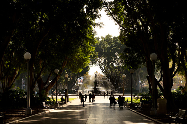 Sydney's Hyde Park stretches for blocks, and borders the Museum and St. James train stations. Photo © 2014 Aaron Saunders