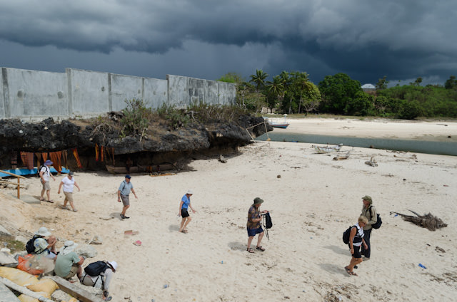 Guests returning across the beach to our waiting Zodiacs under brooding skies. Photo © 2014 Aaron Saunders