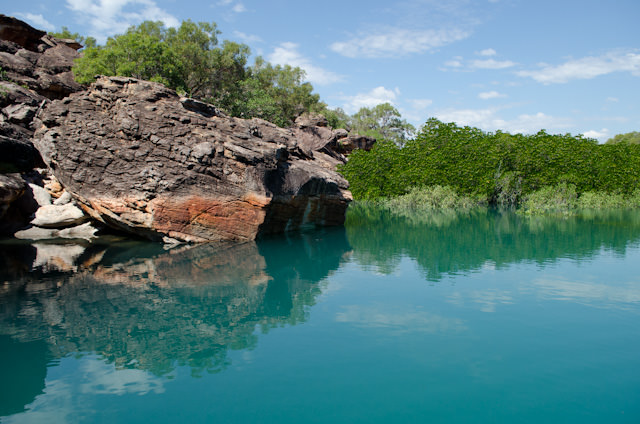 Swift Bay's mangroves provided some of the most beautiful scenery we've seen so far on our Silversea Expedition through Australia's Kimberley Coast. Photo © 2014 Aaron Saunders