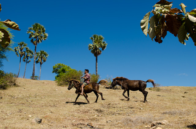 A traditional way of life is still practiced here - though most locals have cell phones! Photo © 2014 Aaron Saunders