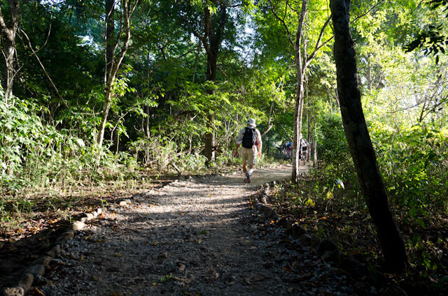 ...and into the jungle to search for Komodo dragons. Photo © 2014 Aaron Saunders