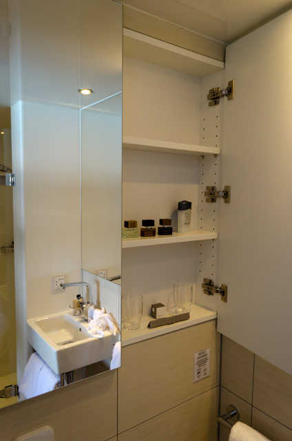 Toiletries can be placed on shelves located behind the mirrors above the toilet. Photo © 2014 Aaron Saunders