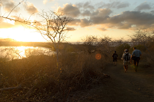 There are many things I love about the Galapagos... Photo © 2014 Aaron Saunders