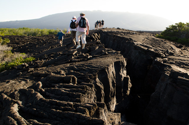 On the subject of all things dead, the long hike I participated in hiked across the immense lava fields that cover much of the island. Photo © 2014 Aaron Saunders