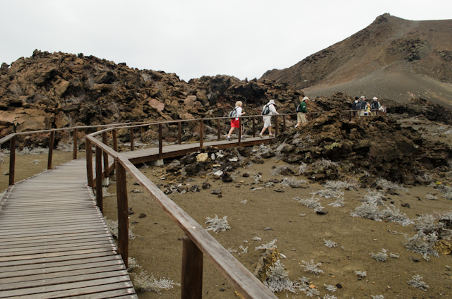 ...for our nearly 400-step hike to the top of the island, some 300 feet above sea level. Photo © 2014 Aaron Saunders