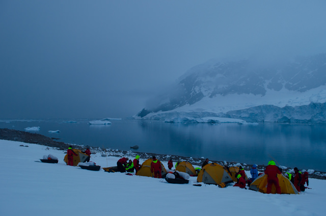 Have you ever camped in Antarctica? You can, when you sail with Hurtigruten! Photo © 2015 Aaron Saunders