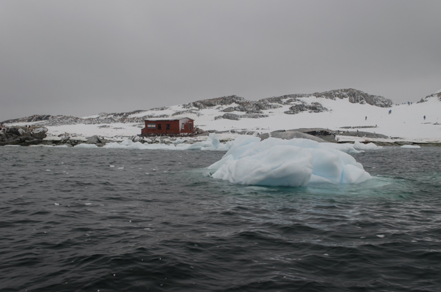Antarctica is a fabulous destination, and Hurtigruten does a good job there. But there are some policies you should be aware of before you go. Photo © 2015 Aaron Saunders