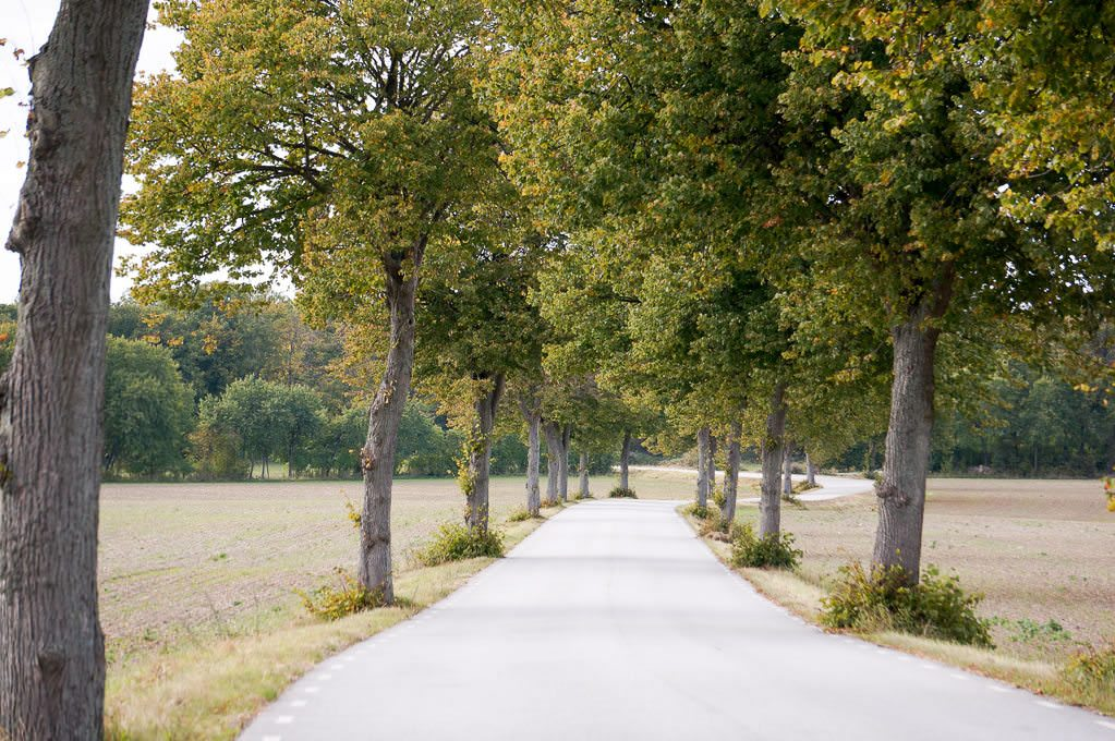 Roads with no traffic, perfect for cycling. © Ralph Grizzle
