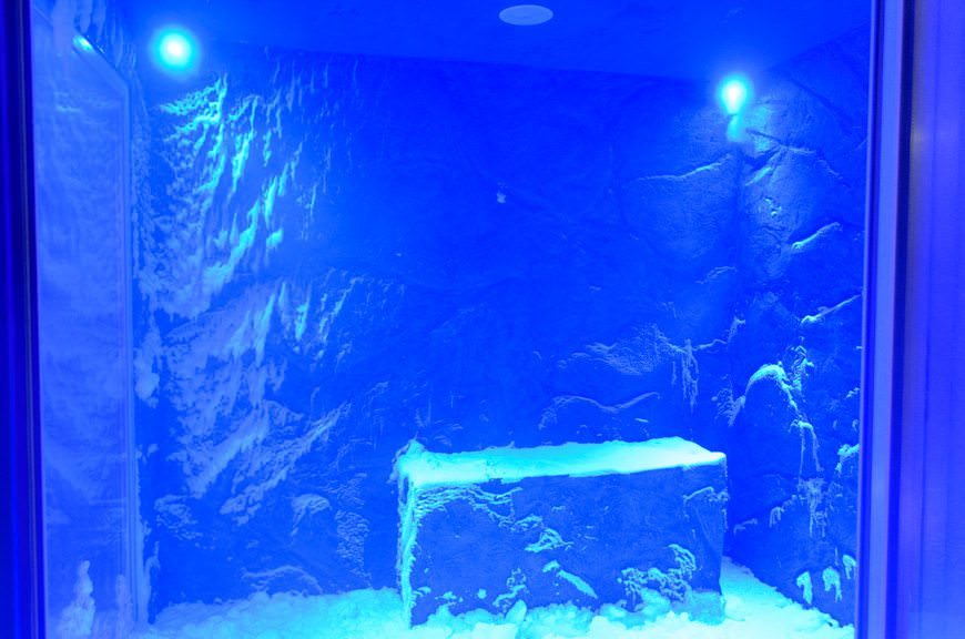a real snow room! Photo © 2015 Aaron Saunders