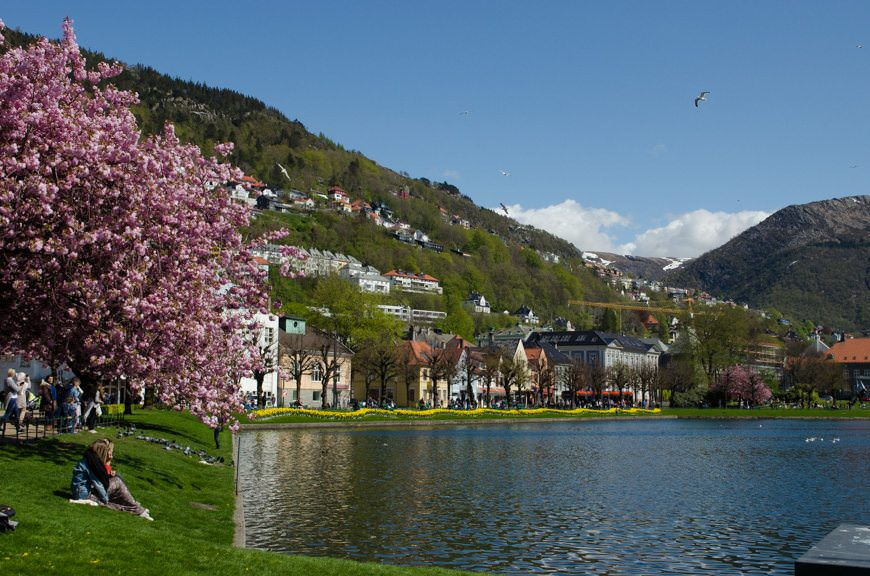 A more gorgeous day in Bergen I've never seen. Photo © 2015 Aaron Saunders