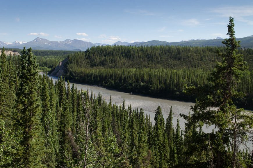 The views from the hotel are magnificent, looking out over Denali National Park. Photo © 2015 Aaron Saunders