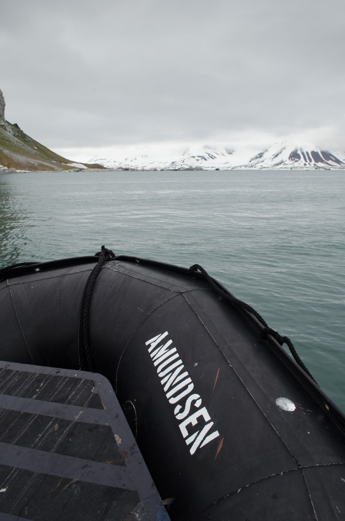 How Appropriate: my Zodiac on this afternoon's trip to Gnalodden is named Amundsen, after Norwegian polar explorer Roald Amundsen. Photo © 2015 Aaron Saunders