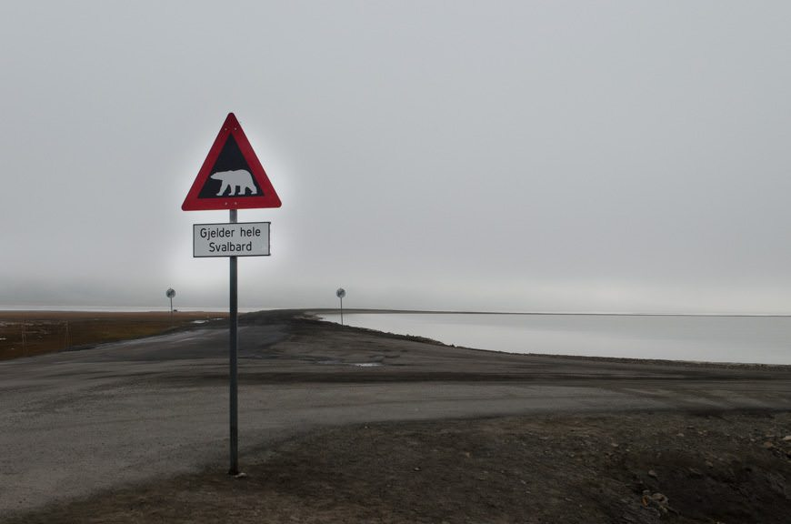 The only traffic sign in the world to sport a black background: polar bears are possible from this point on. Guns must be carried. Photo © 2015 Aaron Saunders