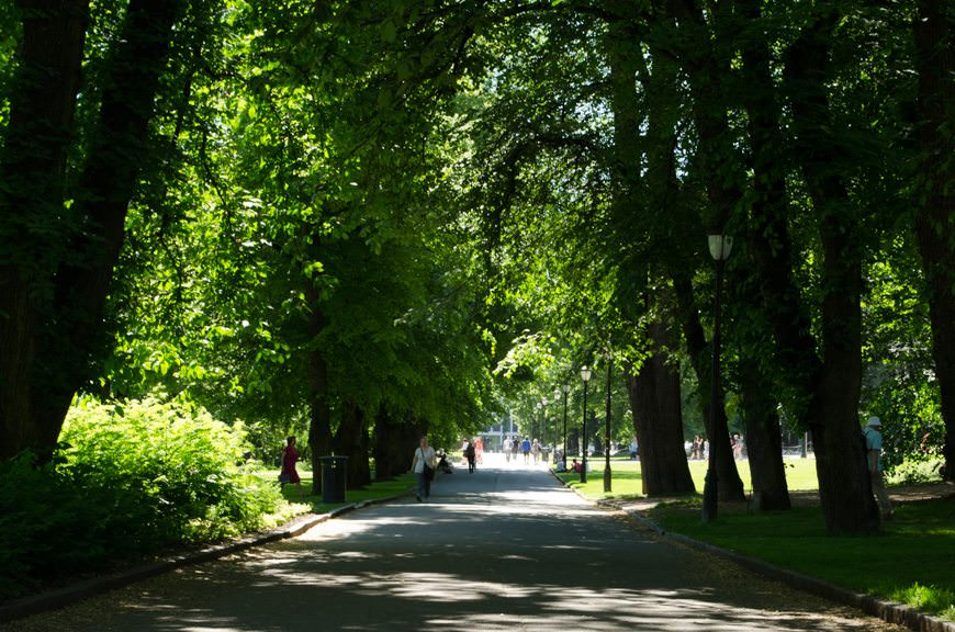 Strolling through the wooded Slottsparken, on the grounds of the Royal Palace. Photo © 2015 Aaron Saunders
