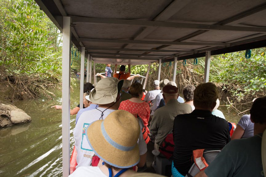 Our overloaded boat makes its way through the mangroves. We'd later offload two guests onto another boat - mid-stream. Photo © 2016 Aaron Saunders