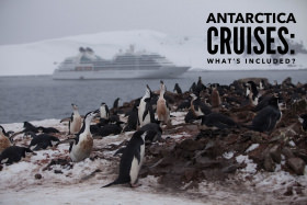 Antarctica Cruises 2019: What's Included?