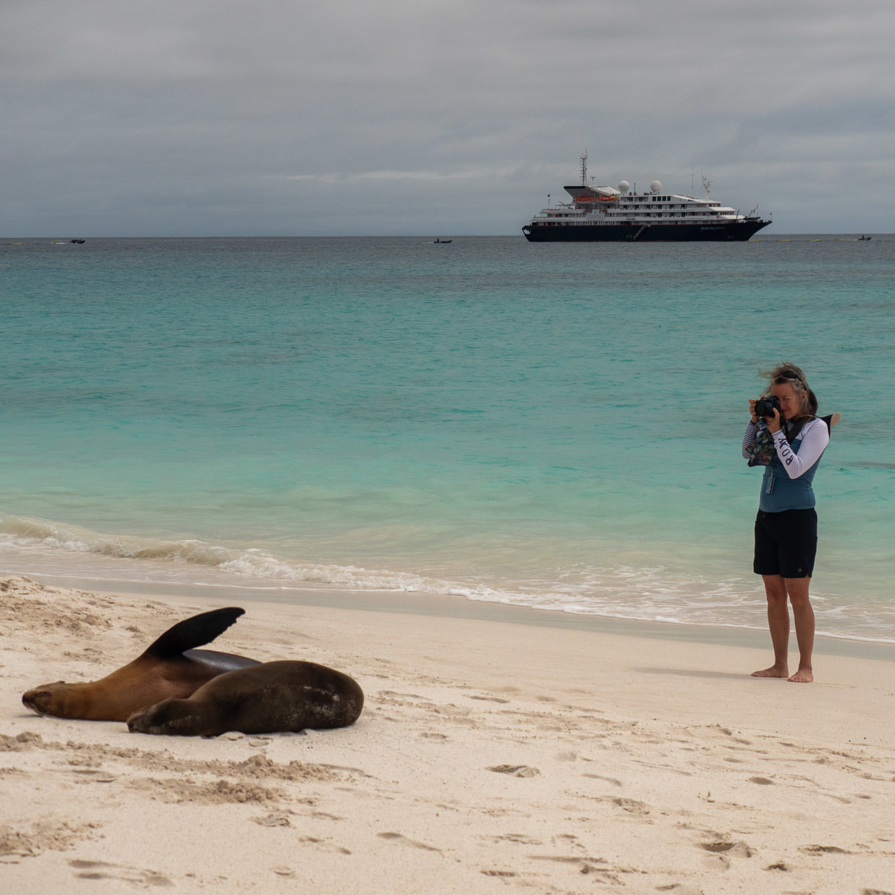 Galapagos. © 2019 Ralph Grizzle